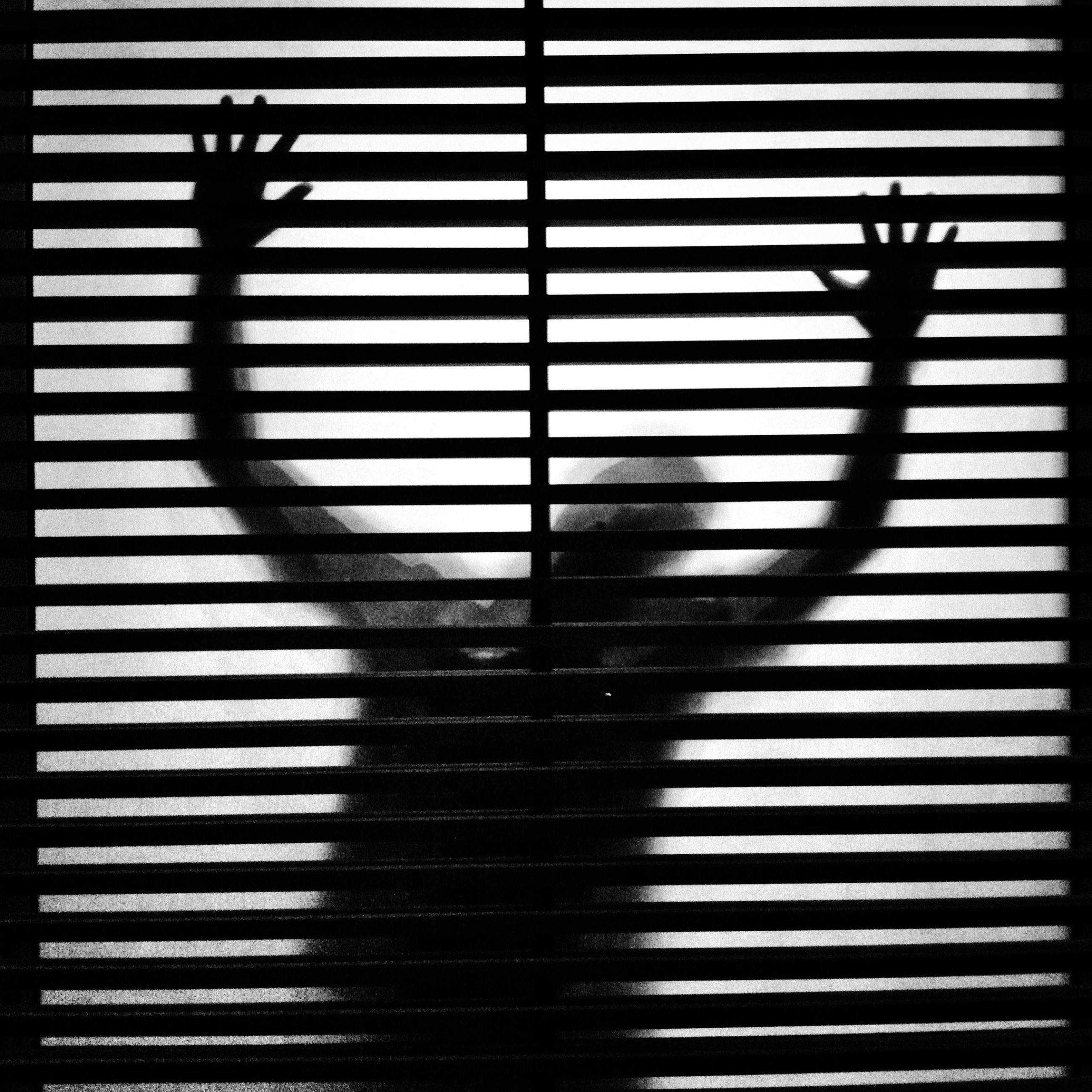 transfer print, silhouette, indoors, auto post production filter, shadow, pattern, built structure, sunlight, architecture, railing, sunset, metal, no people, blinds, protection, day, dark, design, reflection