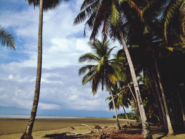 One of the most beautiful places I have ever been. Costa Rica Corcovado Traveling Travel Photography Beach Living The Good Life
