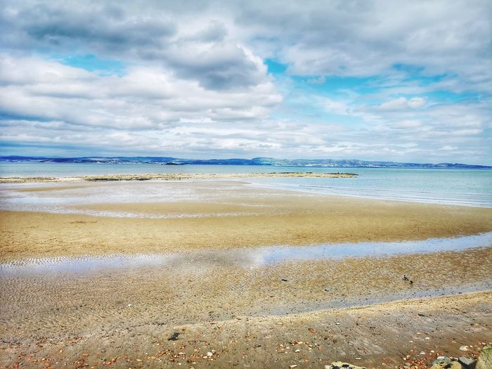 Water Low Tide Flamingo Sea Beach Sand Blue Summer Sky Horizon Over Water
