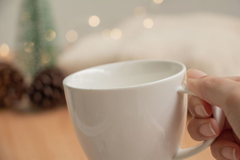 hand holding cup of hot chocolate. Pine Tree Winter Hot Chocolate Light Christmas Lights Cozy Cozy At Home Lifestyles Relax Woman Young Human Hand Drink Tea - Hot Drink Holding Coffee - Drink Coffee Cup Close-up Food And Drink Hot Drink Tea Cup Beverage Afternoon Tea Tea