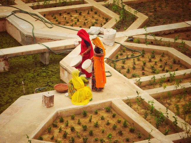 In Travel Women At Work Red Fort Sari Colourful Colourful Dresses Water Watering Garden Geometrical