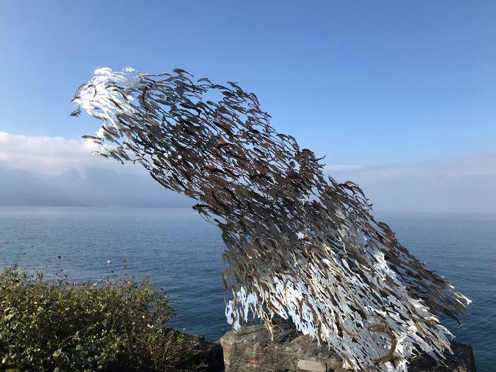 Sculpture Sea