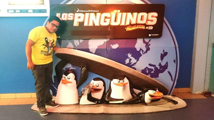 Pinguins  Gorditosybonitos Madagascar  Dreamworks