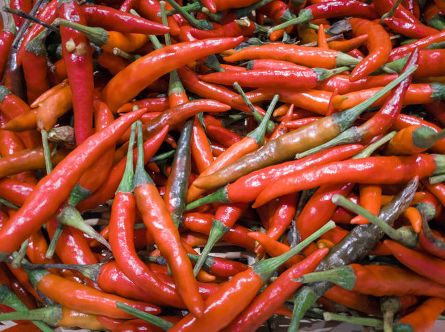 Thai red chili (Bird's eye chili) Red Chili Pepper Spicy Hot Thai Red Backgrounds Market Full Frame Vegetable Retail  Spice Close-up Food And Drink Red Chili Pepper Chili  Market Stall Street Market Stall Pepper Farmer Market Chili Pepper Retail Display For Sale EyeEmNewHere