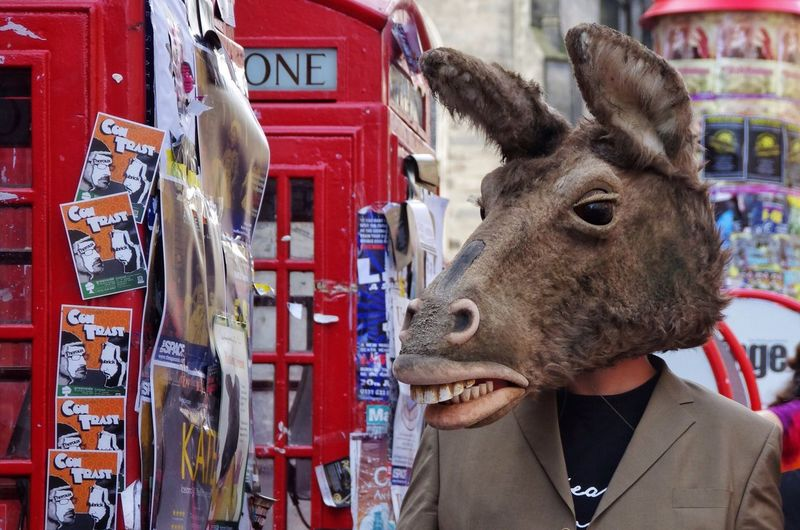 Donkey Bottom Shakespeare Mask Animal HEAD Edinburgh Edinburgh Fringe Festival Street People Portrait Scotland Arts Theatre Performer  Realistic Animal Themes Telephone Box Suit A Midsummer Night's Dream Edinburgh Festival