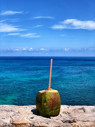 Tropical Coconu
