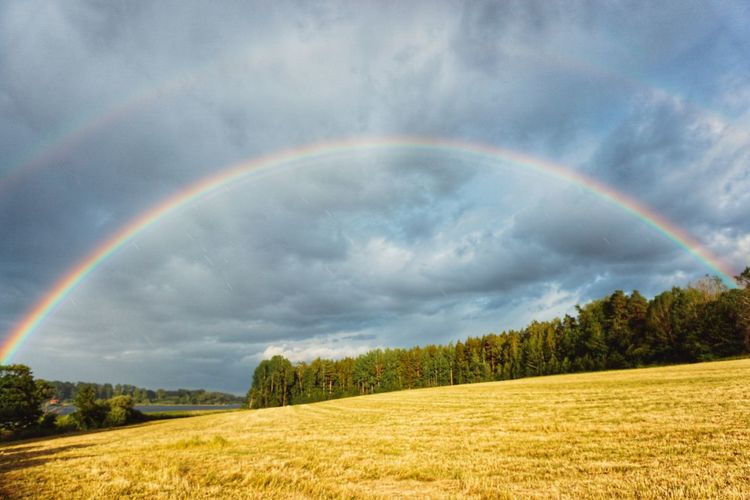 2019 Niklas Storm Juli Tree Spectrum Multi Colored Flower Storm Cloud Rural Scene Agriculture Rainbow Mountain Double Rainbow Farmland Countryside Cultivated Land Agricultural Field Dramatic Sky The Great Outdoors - 2019 EyeEm Awards My Best Photo