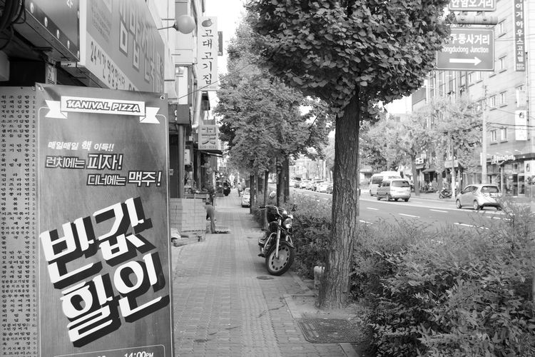 Architecture Building Exterior City City Street Day Korea Nature No People Outdoors Road Seoul Sky Street Text Travel Destinations Tree