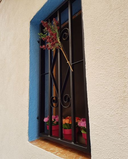 Architecture Window No People Window Box From My Point Of View Colorful Color Palette Cambrils Cambrils Spain Building Exterior Built Structure Day Flower House Outdoors Sunlight Residential Building Red Shadow Whitewashed