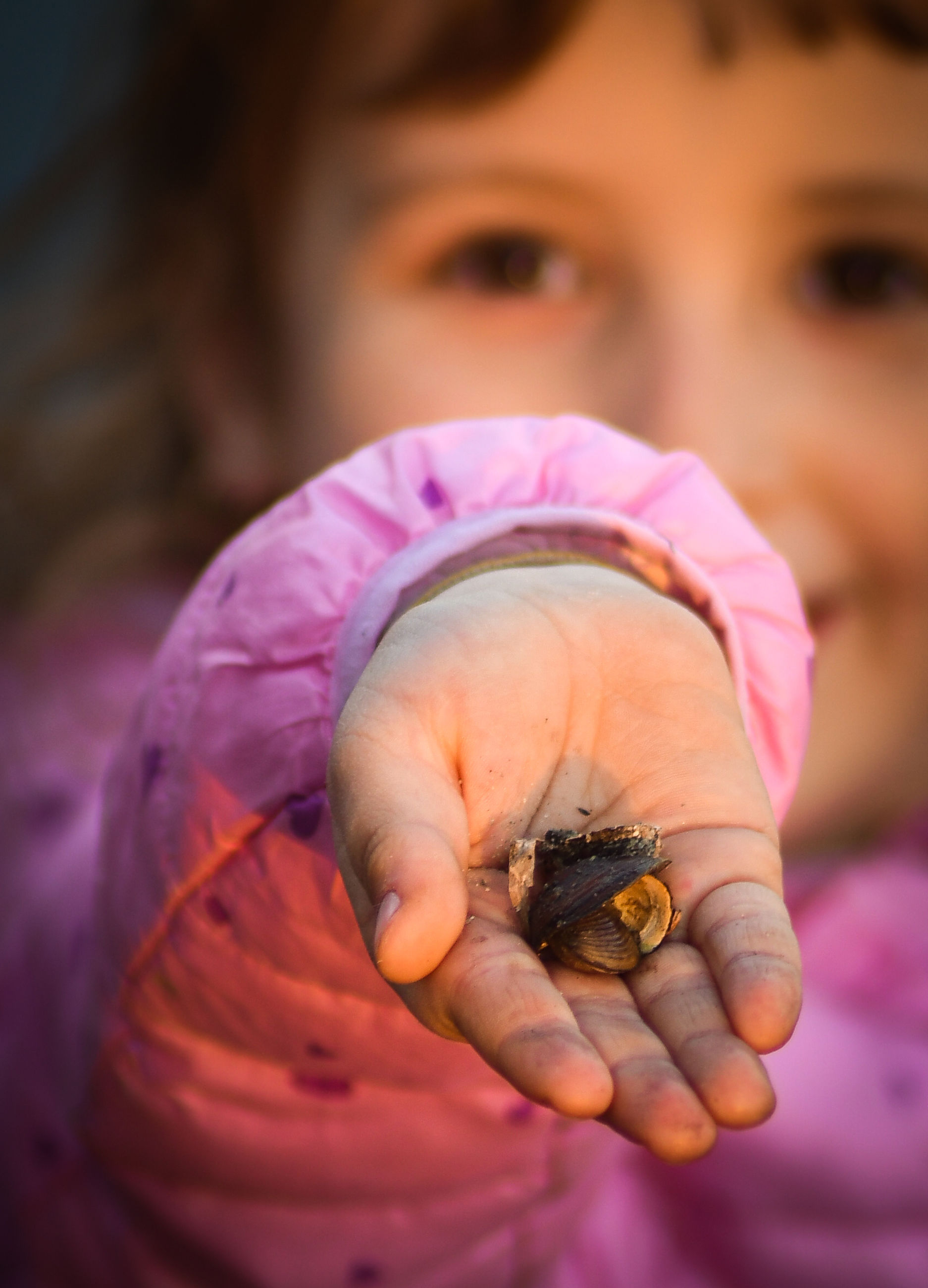 childhood, child, close-up, baby, one person, skin, hand, pink, holding, women, toddler, animal, female, portrait, person, human eye, animal themes, cute, human face, focus on foreground, animal wildlife, lap dog, one animal, food, nature, innocence, selective focus, food and drink, flower, outdoors