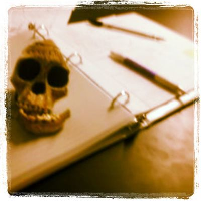 Studying Skull Archeology College