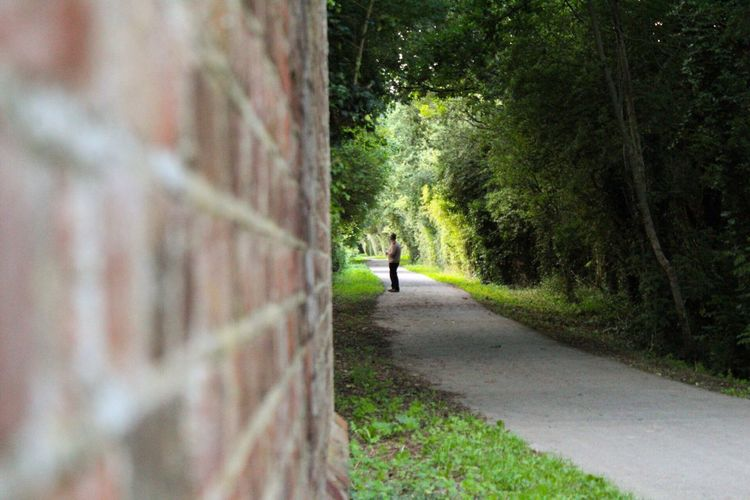 A candid man Brick Brick Wall Green Color DSLR Canon People And Places Nature Candid Focus On Background Focus On Subject