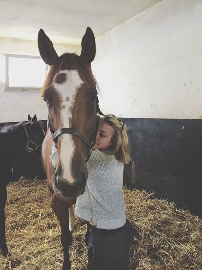 You will be my favorite for the rest of my life, i miss you so much my love. She is the mare of my life, i'm so so sad... 😔😭 i love you to the moon and back my little love❤️💞🐎 see you soon Iloveyou❤ Mare ❤ Thouroughbred Myjob Bye Bye Missing You 😚 Love Beautiful Sweet Girl Perfect Big Hug Lastmoment Horse Seeyouagain MyFavorite  Theend Good Times