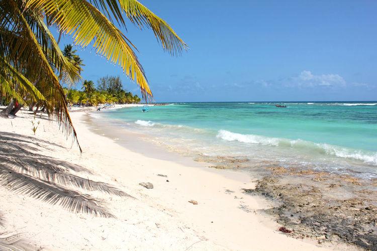 A beach on