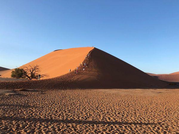 Klibing the dunes Namibia Landscape Sand Dune Namibia Sky Clear Sky Landscape Scenics - Nature Desert Nature Land Sand Tranquil Scene Non-urban Scene Sand Dune Tranquility Environment Beauty In Nature Blue Climate