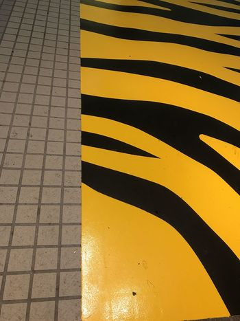 Zebra crossing Striped Yellow