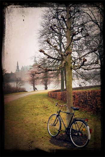 peaceful morning... at Copenhagen Peaceful Morning...