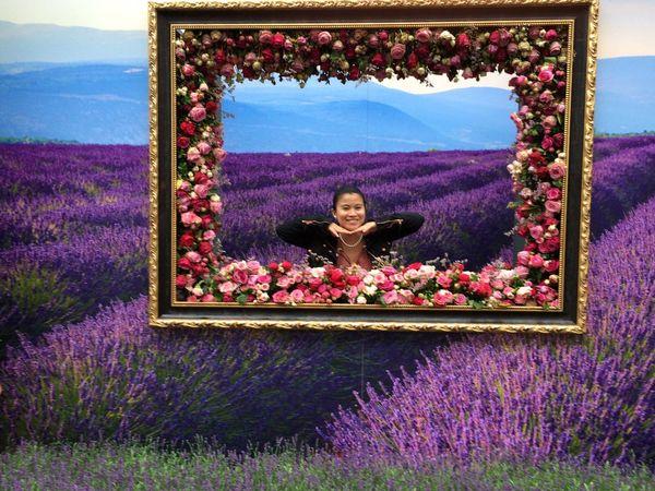 Pitureoftheday Pictureframe Rosesfestival Enjoying Life IPhoneography Rose🌹 Flowers