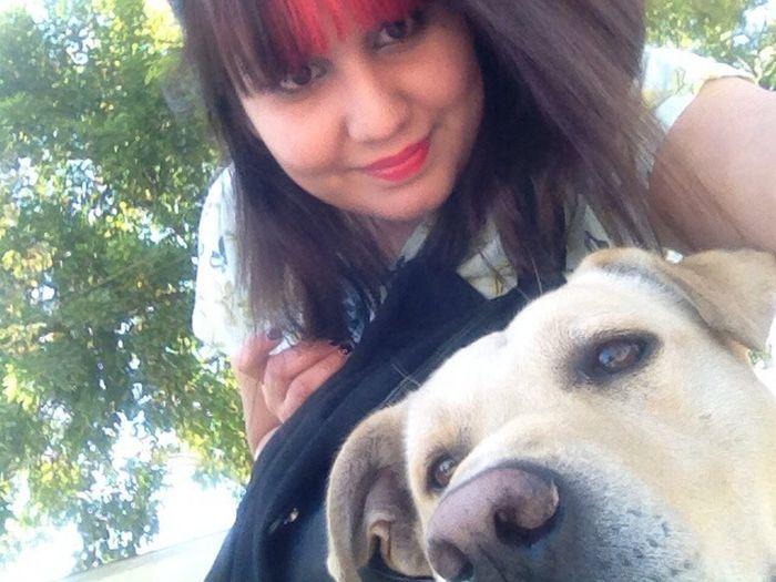 Chile Dog Swedish Girl Holiday
