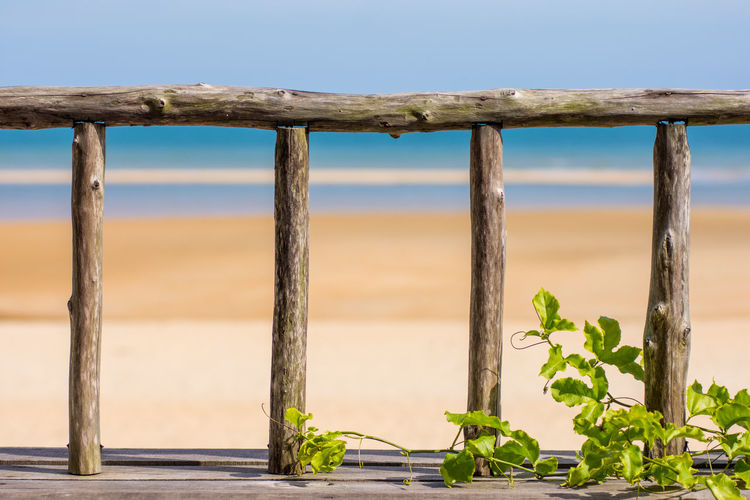 An old weathered wooden fence bannister with a backdrop of a golden sand beach and beautiful blue sea. Hand Rail Balcony Bannister Beauty In Nature Close-up Day Golden Sand Golden Sand Beach Guard Rail Nature No People Outdoors Plant Posts Sky Water Wood - Material Wooden Wooden Post Wooden Posts