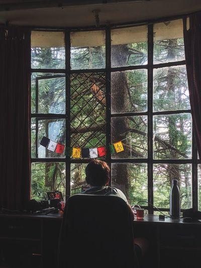 Rear view of man sitting in window
