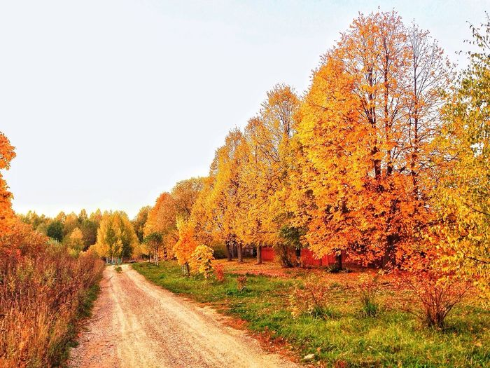 ??? Russia Autumn Nature Romantic