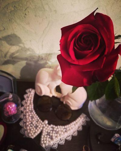 My Love Red Flower Rose - Flower Flower Head No People MyLove❤ Holidays ☀ 💋💞💞❤️💕 😍😌😊