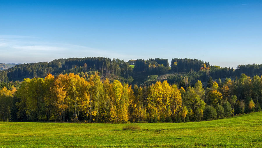 Northern Bohemia in the autumn! Autumn Colors Fields In Autumn Agriculture Autumn Fields Beauty In Nature Bohemian Autumn Field Grass Green Color Landscape Nature No People Outdoors Rural Scene Scenics Sunlight Tranquil Scene Tranquility Tree