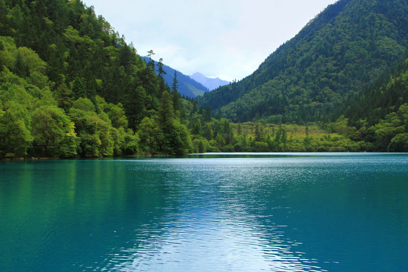 Water Beauty In Nature Mountain Scenics - Nature Tranquility Tranquil Scene Lake Day Non-urban Scene Nature No People Reflection Green Color Outdoors