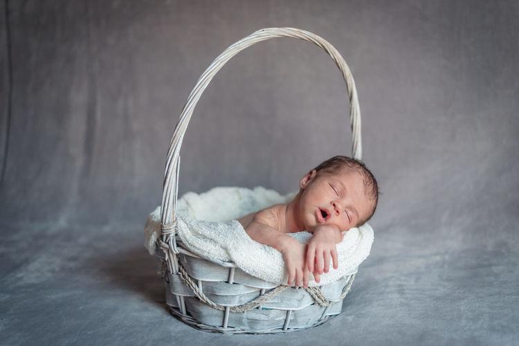 Portrait of cute boy in basket
