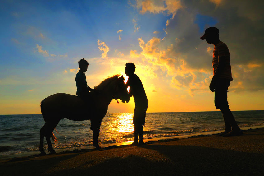 Shiloutte Photography Candid Photography Lombok Photo Works Eyeem Lombok Lombok Gallery EyeEm Indonesia Sunset Silhouettes Indonesia_allshots Meninting Beach Canon PowerShot G7X Hiden Gems Malephotographerofthemonth Indonesia_photography Lombok Island EyeEm Lombok Photographers Alam Kundam EyeEm Lombok Island Horse Photography  Beachphotography Lombok-Indonesia Sunset_collection Colour Of Life From My Eye Of View