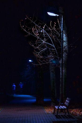 Melancholy Night Lanterns Bench Solitude Melancholy Melancholic Landscapes Melancholic #park Loneliness