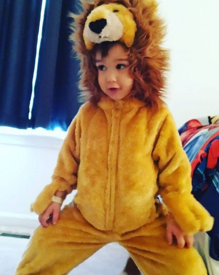 Trying on last year's costume for old times sake. He says he has an official wedgie😨🐯🐾Poorguy Halloween2014 Costumechange