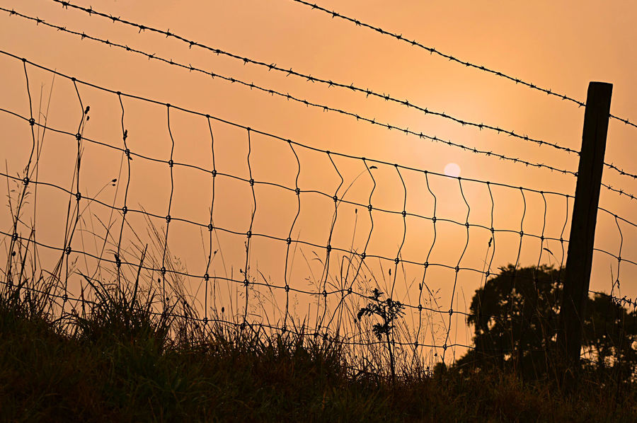 https://www.youtube.com/watch?v=yn7HXmzxqV8 Autumn Colors EyeEm Best Shots EyeEm Nature Lover EyeEm Gallery Forbidden From My Point Of View Life's Simple Pleasures... Sunlight Taking Pictures Barbed Wire Beauty In Nature Darkness And Light Denial England Eye4photography  Nature Silhouette Sunset