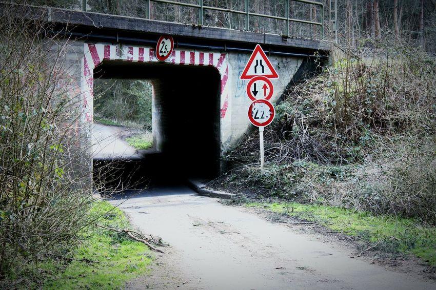 Tunnel Signs Railway Walking Around Street Taking Photos Shrubbery Niceplace Loveit Photowalk