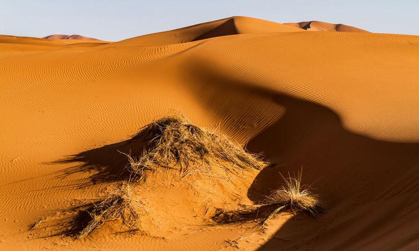 Sand Dune In Desert Against Clear Sky