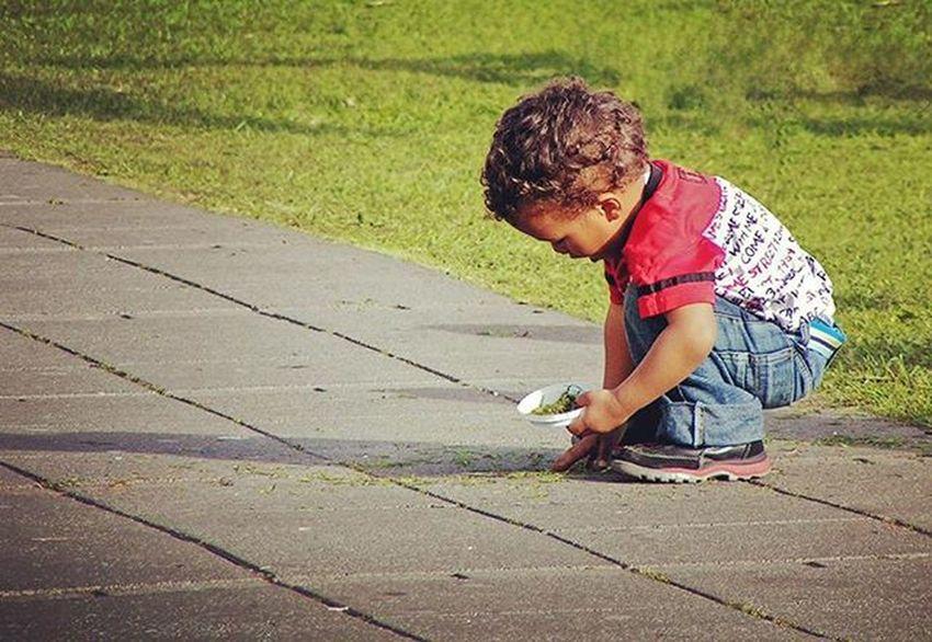 The young botanist. Child Iceland Reykjavik Island Instadaily Igscandinavia Igersreykjavik Summer Igiceland Ig_iceland Youth Cutest Scute Botanical Igkids Kidsofinstagram