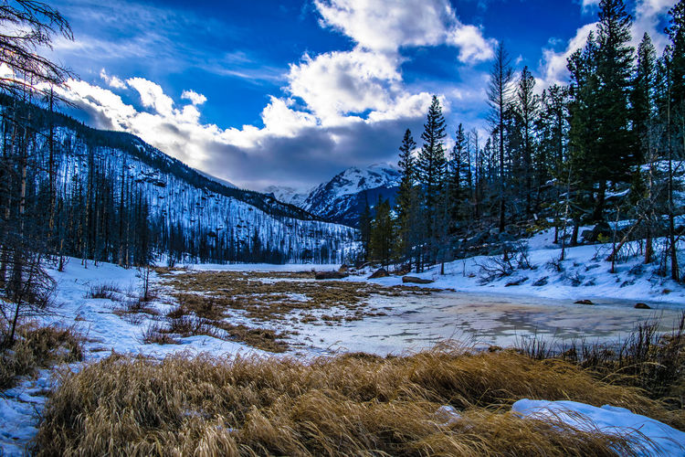 Winter in Colorado Colorado Denver Estes Park Snow ❄ Winter Beauty In Nature Cloud - Sky Cold Temperature Day Lake Landscape Mountain Mountain Range Nature No People Outdoors Scenics Sky Snow Tranquil Scene Tranquility Tree Winter