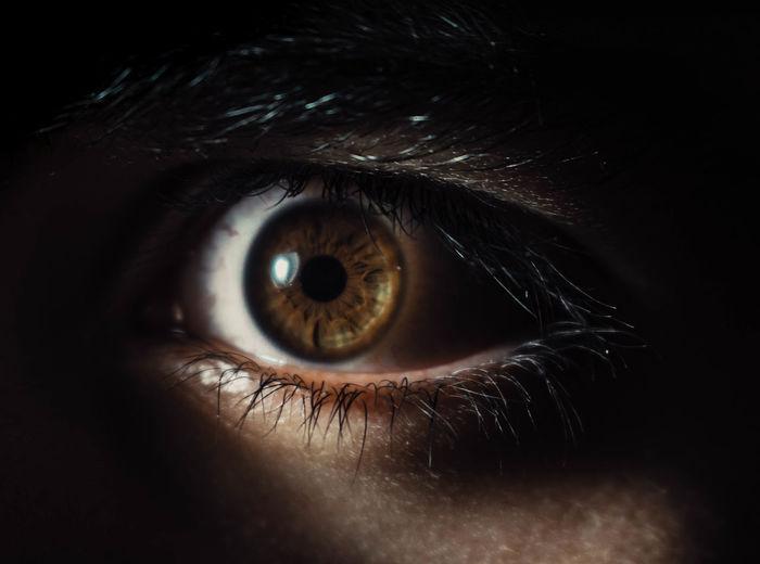 Close-up Extreme Close-up Eye Eyelash Eyesight Hazel Eyes  Human Eye Iris - Eye Looking At Camera Sensory Perception HUAWEI Photo Award: After Dark