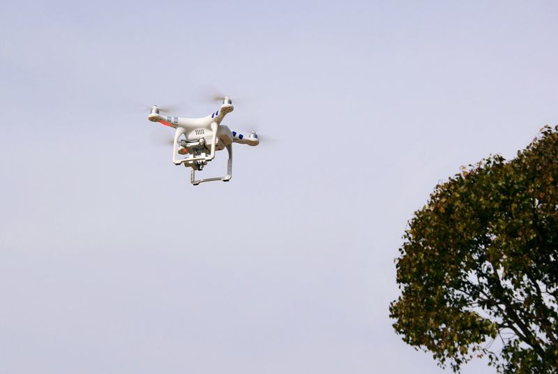Exciting Enthusiasm Happy Time Blue Sky Park Playing Time Tree Unmanned Aerial Vehicle Flying