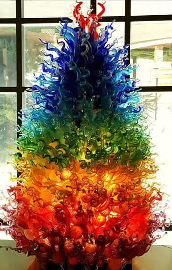 Abundance Backgrounds Glass Tree Multi Colored Multicolored Tr Pattern Pride Color Rainbow Rainbow Trout Season