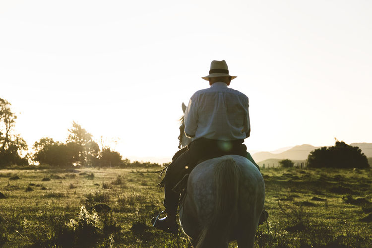 Rear View Of Man Sitting On Horse Over Field Against Sky