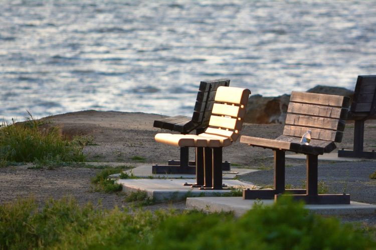 Empty Bench By Sea