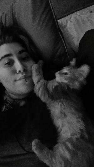 New cuddle bug Fenix Animals Cuddlebuddy Cuddles Cat Kittens Sleepy Laying In Bed Trying To Sleep New Love Blackandwhite