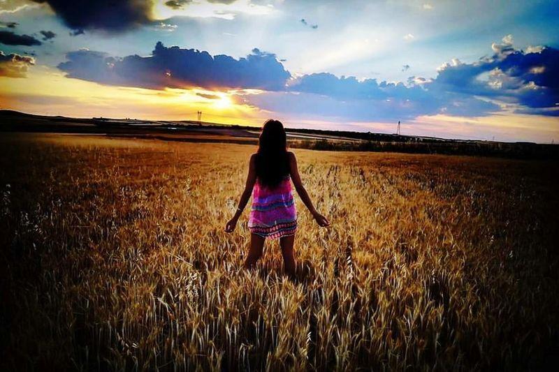 Toledo #ski #Colores #magico. #atardecer #cielo #Paisaje #Campo #MagicofLight #summer #verano Field Sunset Rural Scene Agriculture Rear View Cereal Plant Crop
