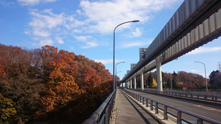 Chiba,Japan Chiba_monorail Autumn Bridge - Man Made Structure Railroad Track Outdoors Sky Tree No People