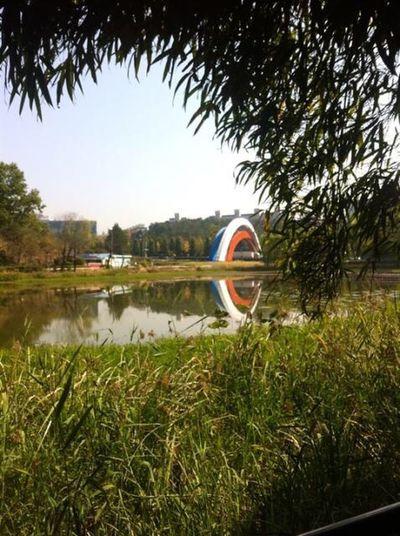 rainbow bridge in gwangju south korea First Eyeem Photo
