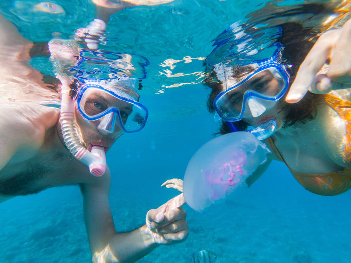 Couple snorkeling underwater with fishes and jellyfishes in the Red sea Couple Exploring Man Snorkeling Summer Vacation Swimming Woman Blue Water Eyewear Fish Jellyfish Leisure Activity Lifestyles Nature Outdoors Real People Red Sea Sea Snorkel Snorkeling Swimming Swimwear UnderSea Underwater Water