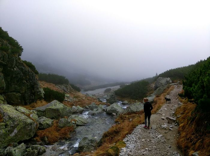 Fog Nature Weather Landscape Beauty In Nature Rain Real People Tree Scenics People Day Silence Mountain Outdoors Hightatras  Forest Tatry-Slovakia Fog Nature Weather Landscape Beauty In Nature Rain Real People Tree