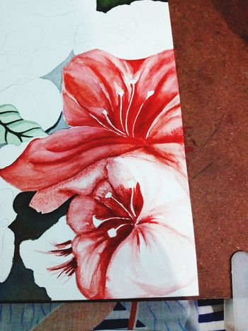 EyeEm Selects Red No People Day Flower Indoors  Close-up Painting Art EyeEmNewHere Expressions Do Not Lie! Hotred Watercolor Painting